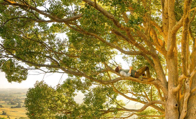Méditation guidée dans la nature
