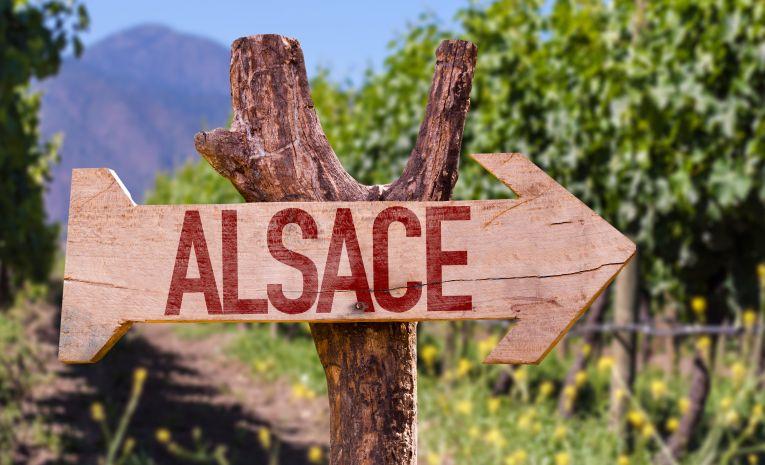 Alsacien débutants et initiés